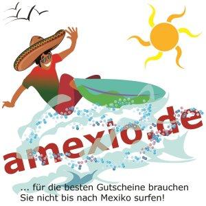 amexio.de Surfer Logo